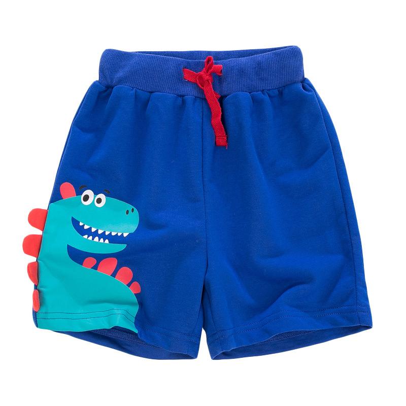 Dinosaur Model Boys Shorts