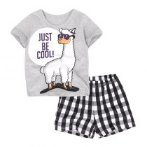 alpaca cartoon  prints Baby and Toddler T-Shirt in grey color and Mesh Shorts Set for baby boy wearing in summer day, include short sleeve T-shirt and shorts