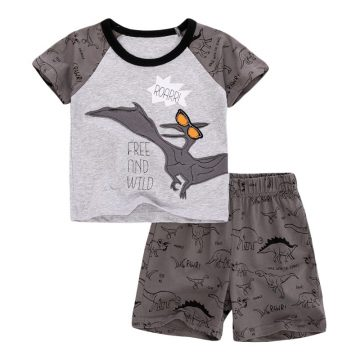 Pterosauria cartoon  prints Baby and Toddler T-Shirt  and Mesh Shorts Set for baby boy wearing in summer day, include short sleeve T-shirt and shorts  with word free and wild