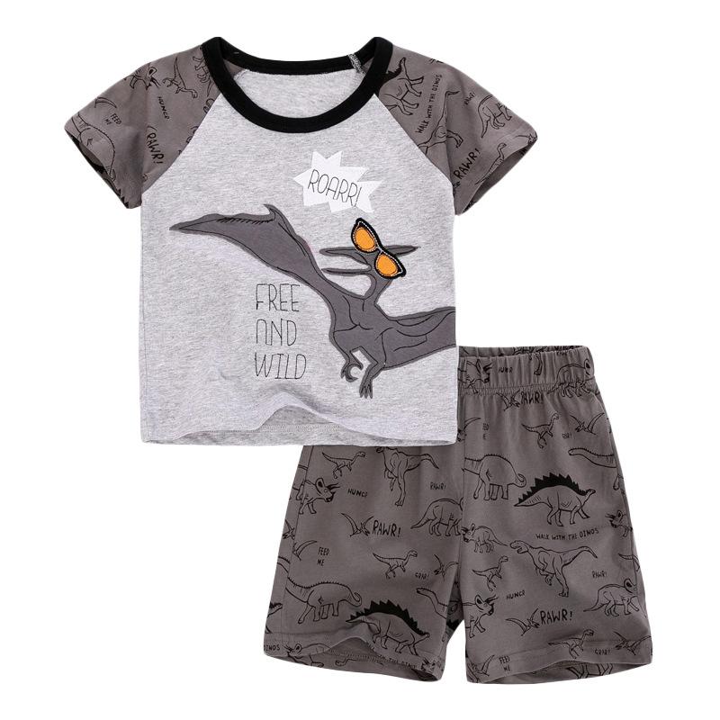 Pterosauria Print Baby Boys T-shirt+ Shorts  Set in Grey