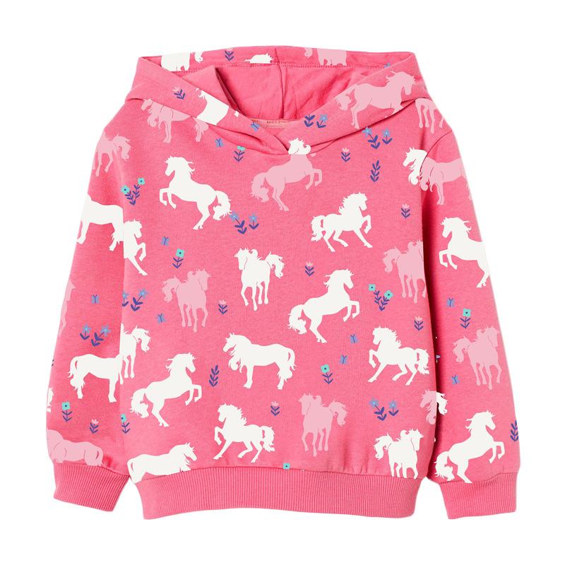 Girls' Sweater Autumn Round Neck Long Sleeve Children's Hoodie
